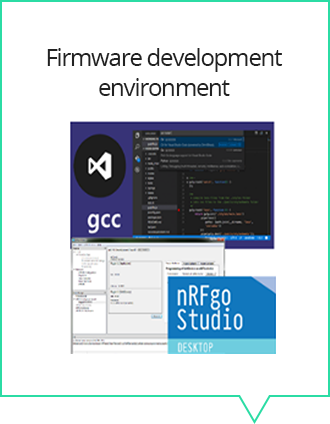 Firmware development environment